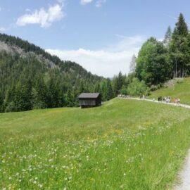 Tolle Tage in Österreich für 22 Kinder und Jugendliche