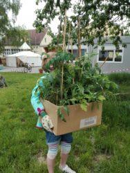 Kleine Tomatengärtner im Wiesenhort